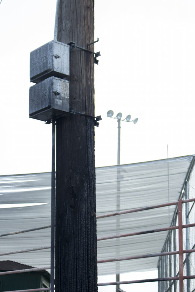 Burnt Light Pole