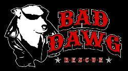 Bad Dawg Rescue